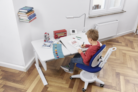 moll champion right children's desk