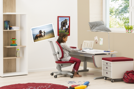 Moll joker kids desk + maximo + cubic
