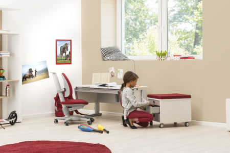 moll joker kids desk